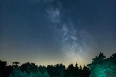 """""""Milkyway at hallerforest - Holland 07-18 """" / Photographer - Jasper Legrand"""