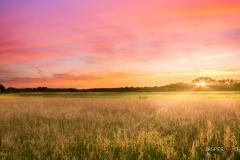 """Sunset Tilburg-Holland"" / Photographer - Jasper Legrand"